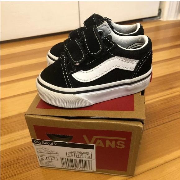 Vans Shoes | Vans Old Skool V Black